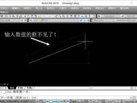 AutoCAD 2010画直线输入数据时,光标旁边输入数值的框没了,只有命令行有显示的解决方法