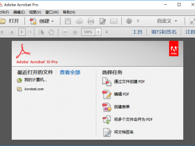 Acrobat XI Pro 2019中文破解版32/64位下载|兼容WIN10