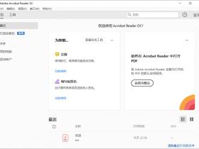 Acrobat Reader DC 2020中文破解版下载|兼容WIN10