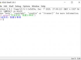 Python 3.9.1正式版32/64位下载(附安装教程)